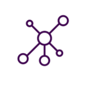 Icon of dots connected by strokes of lines symbolizing a network of people in purple color.